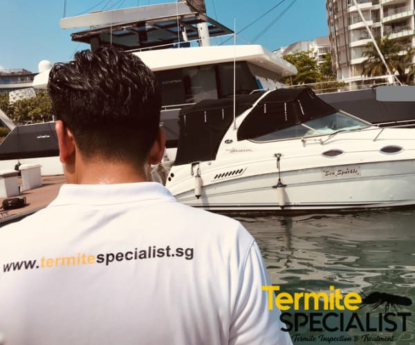 termite specialist pte ltd
