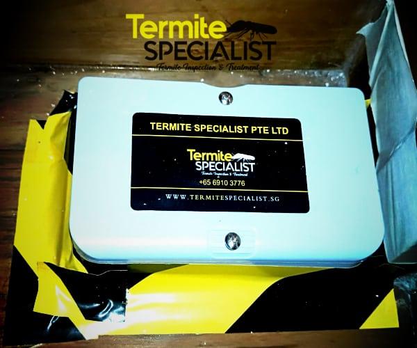 Termite Control Singapore