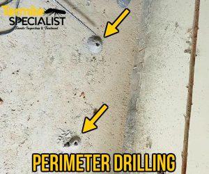 Termite Specialist Corrective Treatment