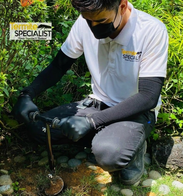 Termite Baiting Treatment In Singapore, Termite Baiting Treatment In Singapore